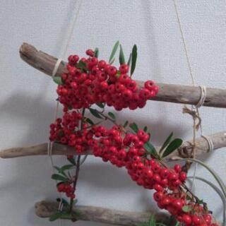 赤い実  クリスマスに是非!