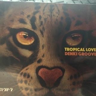 電気グルーヴ TROPICAL LOVE 初回限定版