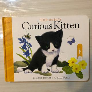 英語の絵本  猫