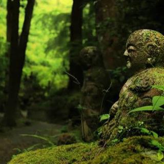 オンライン CMB 瞑想