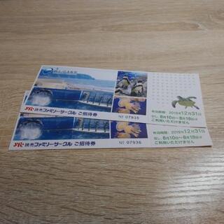 新江ノ島水族館入場券2枚