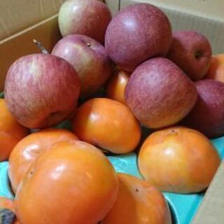 甘柿、富士🍎りんご、売ります。