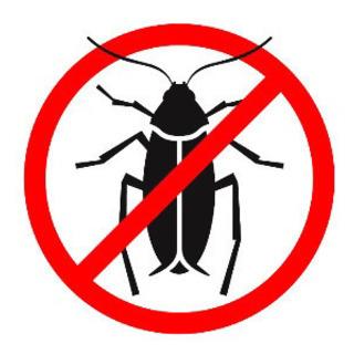 《店舗、ビル等のゴキブリ駆除》深夜対応可能 年内特別価格!