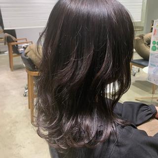 12/1急募!髪質改善カラーモデル募集✨✨