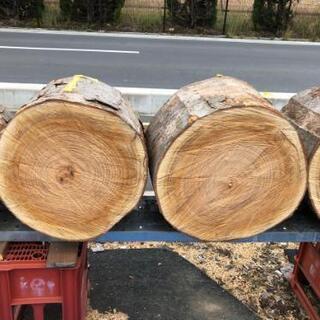 ケヤキ 欅 丸太 薪割台