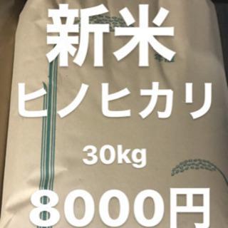 新米 令和元年 ヒノヒカリ30kg