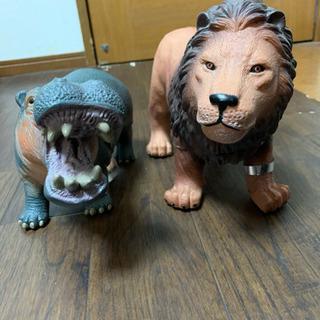ライオンとカバ