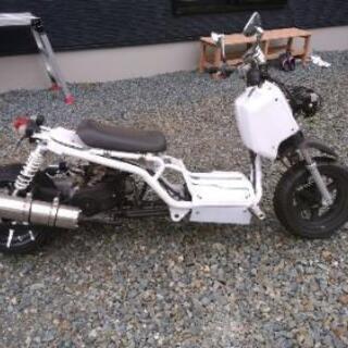 バイク  ズーマー風