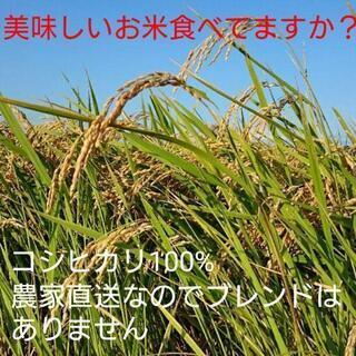 食味値89点❗茨城県産コシヒカリ玄米30㎏