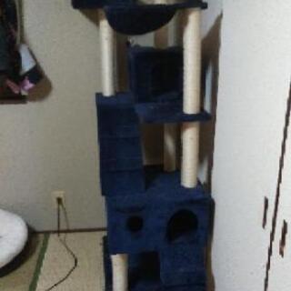 キャットタワー!