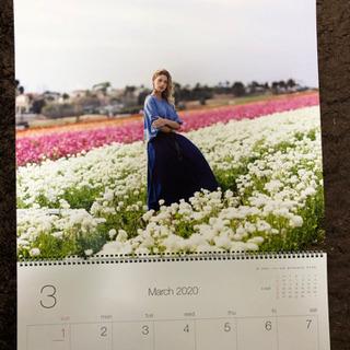 JAL カレンダー 2020 - 蕨市