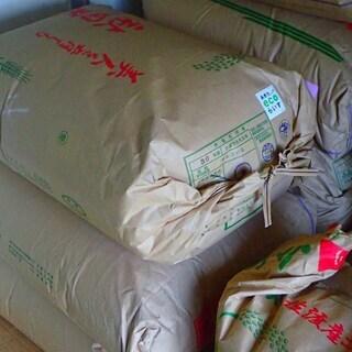 (残り5袋) 新米 稲沢市産 あいちのかおり(玄米) 30kg