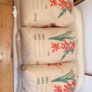 野津産 玄米30kg 野菜色々