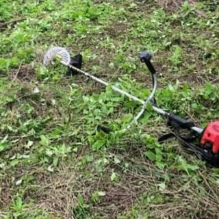 太陽光発電所の草刈り・除草剤