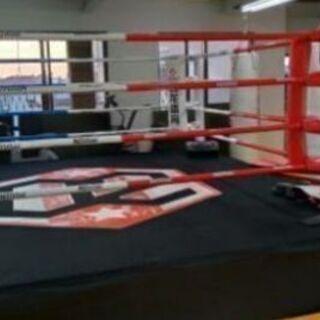 K-1王者のキックボクシングジム - スポーツ
