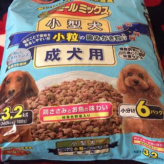 わんちゃん 犬の餌