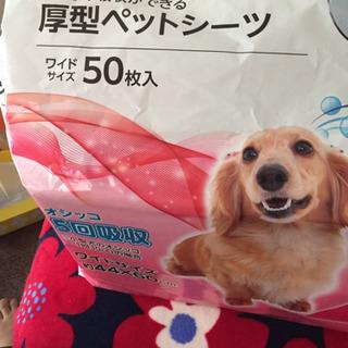 わんちゃん 犬用ペットシーツ