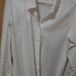 レディースワイシャツ 13号(綿混)