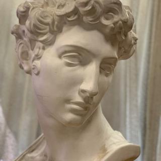 石膏像 ジュリアーノ・メジチ胸像