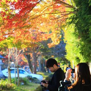 京都大阪の初心者カメラサークル『Pure Mates』