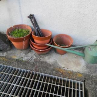 無料でお譲りします。植木鉢11個