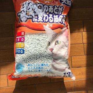 猫砂  新品