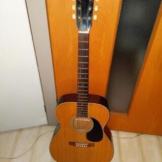 Ariaアコースティックギター・ソフトケース付