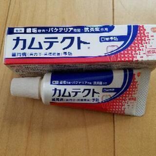 歯磨き粉 カムテクト 35㌘2本
