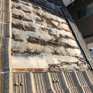 屋根 瓦補修 雨漏れ 天井 クロス貼り