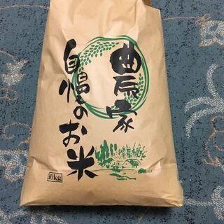 玄米 ひとめぼれ 令和元年 宮城県産 10㎏