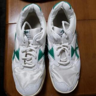 学校の中古体育靴と上履き28 cm