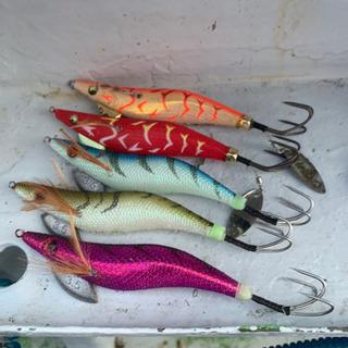 釣り好き、釣りガール、お魚食べたい