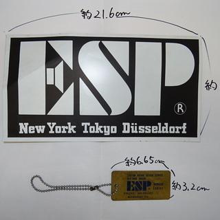 大きいESPステッカーとメンバーズキーホルダー 当時物