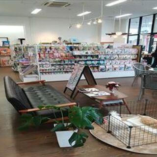 子犬・子猫販売、犬猫セレクト商品、各ペットイベント
