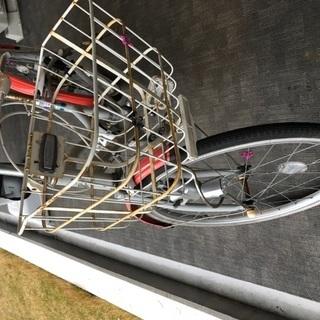 子供用自転車 22インチ ブリヂストン ワイルドベリー - 売ります・あげます
