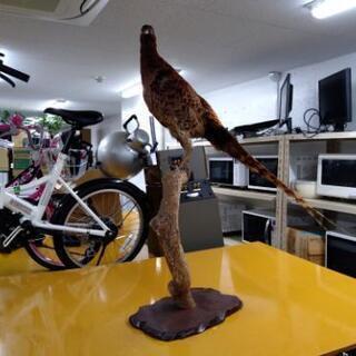 剥製 雉 キジ 木製 古木 台座
