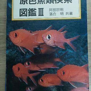 原色魚類検索図鑑 Ⅲ