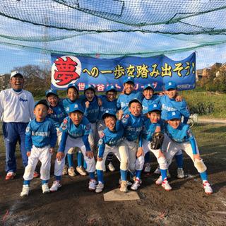 【1月体験会】少年硬式野球_世田谷リトルリーグ
