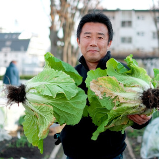 【シェア畑】お野菜栽培にご興味のある方大募集‼【江戸川】