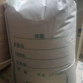 お米 令和元年産 きぬむすめ 30キロ玄米
