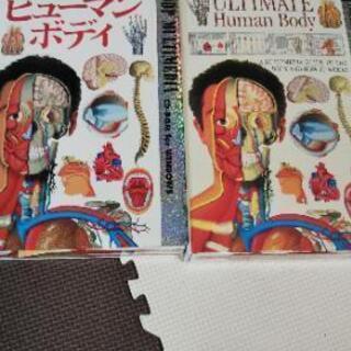 人体百科 CD-ROM