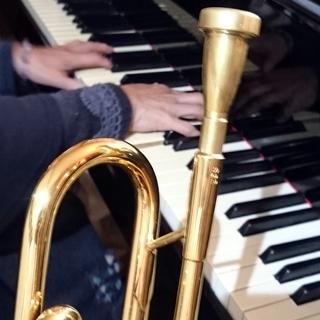 ♪小さなお子さんから大人の方まで楽しく音楽(ピアノ・歌・他)しま...