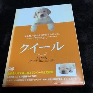 🔴🔟🐶900円‼️名作‼️感動‼️映画‼️🔴🐶盲導犬クイール‼️...