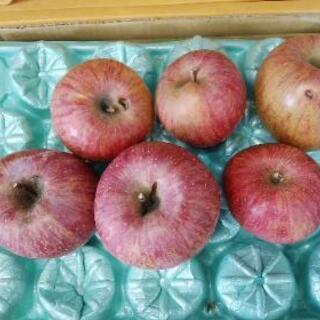 わけありサンふじりんご1kg150円より《特別栽培》福島市
