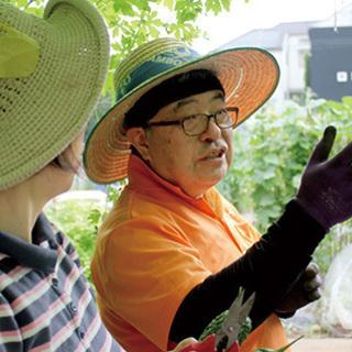 シェア畑で野菜作りを学んでみませんか?【志木】