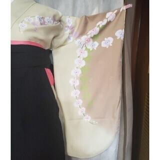 卒業式 袴セット③ - 服/ファッション