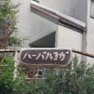 ハーバルヨガ【体験募集中】