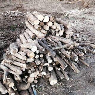 【早い者勝ち】薪 暖炉 薪ストーブ キャンプ バーベキュー…