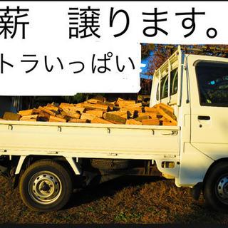 薪ストーブ用 薪 樫の木 トラックいっぱい分