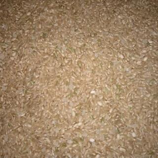 新米!山口県阿東産コシヒカリ30キロ玄米の画像